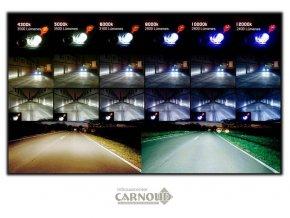 Carnoud_Xenon_3.png