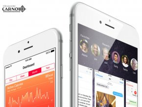 Carnoud_Apple_iPhone_6_Plus_3.png