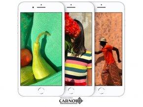 Carnoud_Inbouwcenter_Wijk_en_Aalburg_Samsung_Apple_Nokia_Sony_Apple_iPhone_8_2.jpg